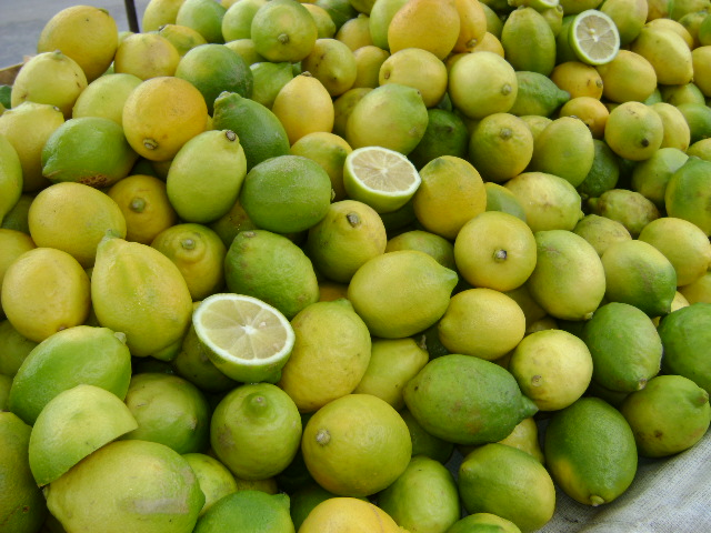 Limones for export